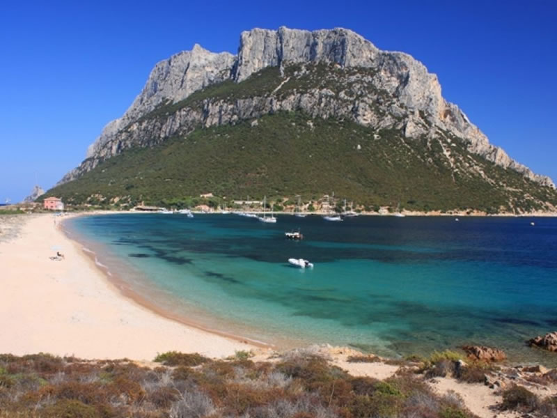 New departure base: Olbia in June and September